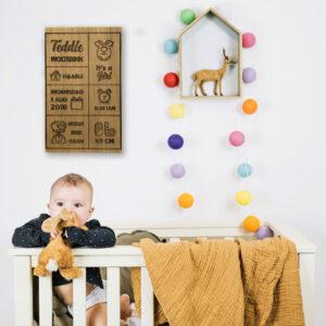 Uniek Geboortebord op hout met romper