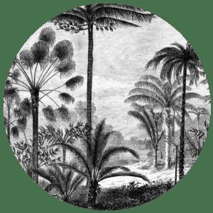 Muurcirkel black and white | Forex | 80 cm | Uniek